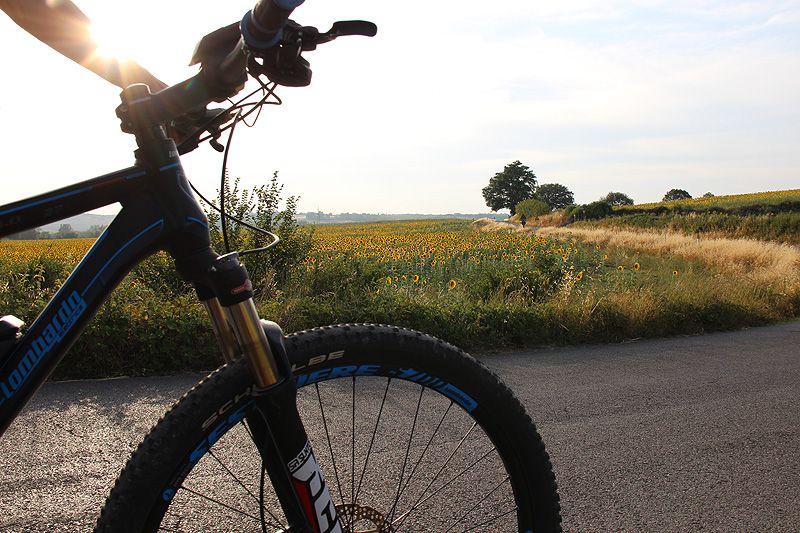 wta-biking_tuscany