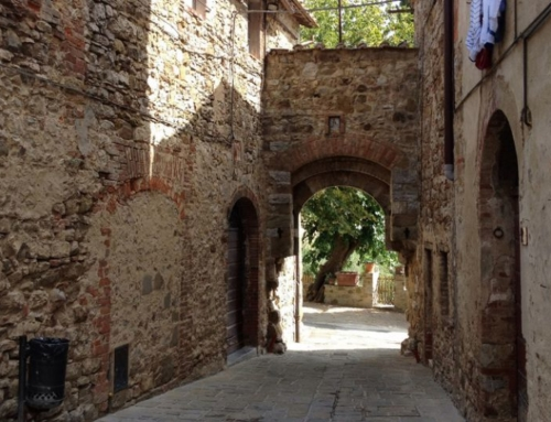 Small Group Chianti & Castles wine tour from Siena