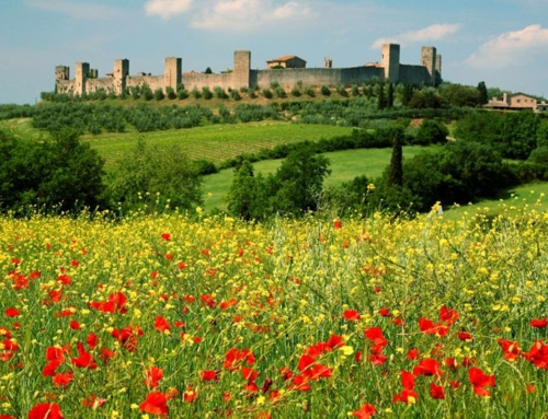 Half day Guided Hike to Monteriggioni from Siena